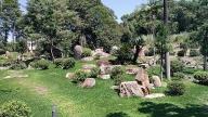 Jardim Japonês no Instituto Biociências da USP 3