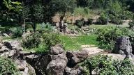 Jardim Japonês no Instituto Biociências da USP 4
