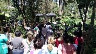 Inauguração do Jardim Japonês 3