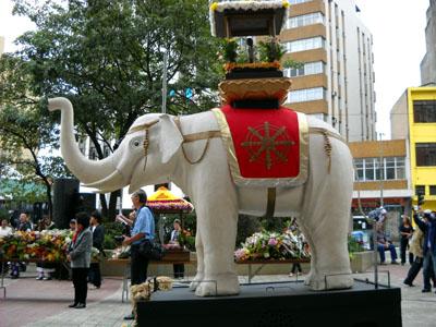 hanamatsuri elefante