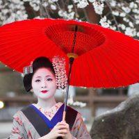 Curso História do Japão - Gratuito - Período Edo